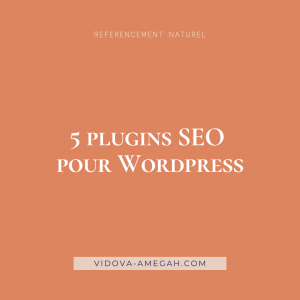 5 plugins seo pour wordpress
